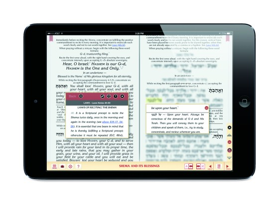 iPad_mini_Horizontal_siddur